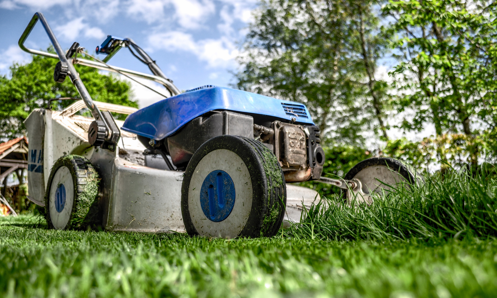 Lawn care and garden maintenance in Bedfordshire